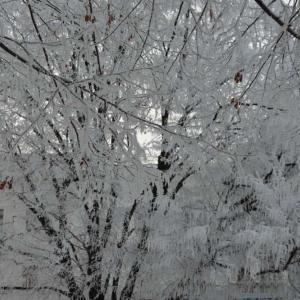 Meteorologové varují před silným mrazem